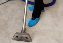 Carpet Cleaning Highgate