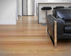 hard-floor-cleaning-polishing-highgate